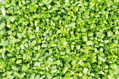 Background of chopped green shallots Stock Photos