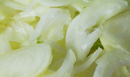 Background of chopped onion Stock Images