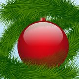 Background Christmas ball and spruce tree Stock Photography