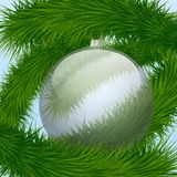 Background Christmas ball and spruce tree Royalty Free Stock Photo
