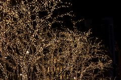 Background with christmas decoration trees in the New York stock image