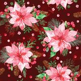 Watercolor seamless pattern with Christmas flower bouquets on dark red background royalty free stock photo