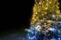 Background Christmas and new year fir tree  night with lights Royalty Free Stock Image