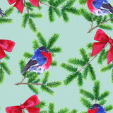 Background Christmas tree branch and bullfinch. Seamless pattern. Watercolor Christmas illustration. Royalty Free Stock Images