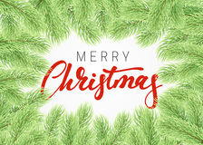 Background Christmas tree branches border. Royalty Free Stock Photography