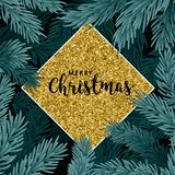 Background with Christmas tree branches stock images