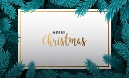 Background with Christmas tree branches royalty free stock photo