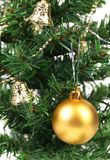 Background of christmas tree and yellow ball. Stock Photo