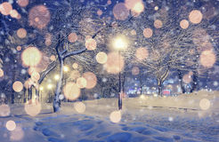 Background Christmas in the winter landscape. Stock Photography