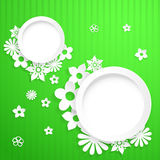 Background with circles and paper flowers Royalty Free Stock Image
