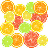 Background with citric fruits Royalty Free Stock Photos