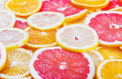 Background with citrus-fruit of Fresh fruit slices Royalty Free Stock Photos