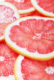 Background with citrus-fruit of grapefruit slices. Focus in the middle of the frame into slices of grapefruit Royalty Free Stock Image