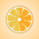 Background with citrus fruits Stock Photo