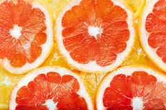 Background of citrus fruits oranges and grapefruit slices. Studi Stock Images