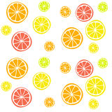 Background with citrus fruits Royalty Free Stock Images