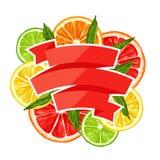 Background with citrus fruits slices. Mix of lemon lime grapefruit and orange.  vector illustration