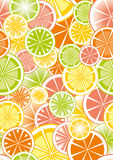 Background of citruses Stock Image