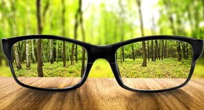 Background. Clear forest in glasses on the background of blurred forest Royalty Free Stock Images