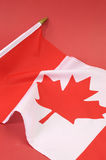 Background close up of Canadian Maple Leaf - vertical Royalty Free Stock Photos