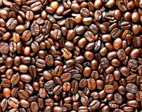 Close-up of the a lot of coffee beans Royalty Free Stock Photography