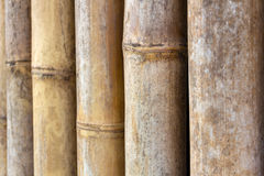 Background of closeup old vintage bamboo wal Stock Photo
