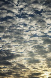 Background of cloudy sky at dawn Royalty Free Stock Images