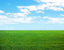 Background of cloudy sky and grass Stock Photos
