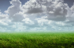 Background with a cloudy sky Royalty Free Stock Photos
