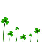 Background with clover in vector. Vector illustration Stock Images