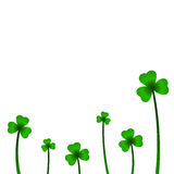 Background with clover in vector. Vector illustration Royalty Free Stock Photos