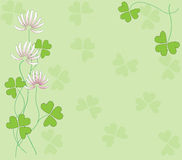 Background with clovers. Green abstract background with clovers in bloom Stock Images
