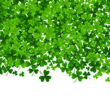 Background with clovers, St. Patrick s Day background .Vector illustration Royalty Free Stock Photos