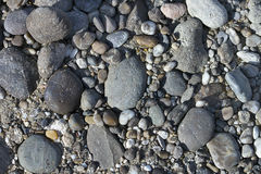 Background of coastal pebbles. Coastal pebbles of different shapes and colors on a grey ground.  It fills completely the whole space of picture. Suitable for Royalty Free Stock Photography