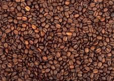 Background of coffee bean Royalty Free Stock Images