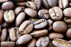 Background coffee - the beans Stock Photography
