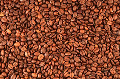 Background with coffee beans. Stock Photography