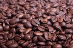 Background coffee beans. Royalty Free Stock Images
