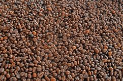 Background of coffee beans. Brown background of coffee beans Stock Photo