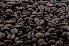 Background of coffee beans close-up Royalty Free Stock Photo