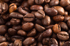 Background of coffee beans. Coffee beans close-up, background of coffee beans Stock Image