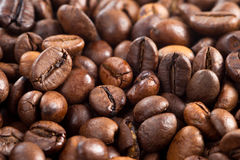 Background of coffee beans. Coffee beans close-up, background of coffee beans Royalty Free Stock Images