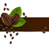 Background of coffee beans. With leaves Stock Images