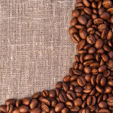 Background from coffee beans Stock Image