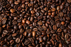 Background from coffee beans. Stock Image