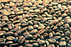 Background of coffee beans Royalty Free Stock Images