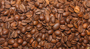 Background of the coffee beans. Roasted coffee beans close-up royalty free stock images