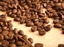 Background of coffee grains Royalty Free Stock Images