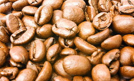 Background from coffee grains. Background from brown coffee grains Stock Photos