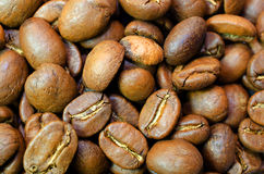 Background of coffee grains Stock Images